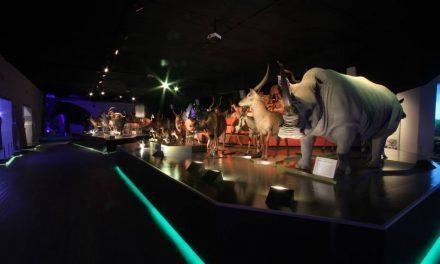 Conoce las diferentes salas y piezas del Museo de la Evolución Puebla