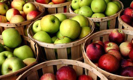 Feria de la Manzana en Zacatlán