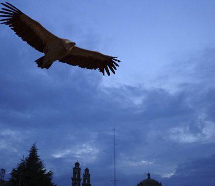 Leyendas de Zacatlán: El nahual