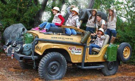Visita Africam Safari