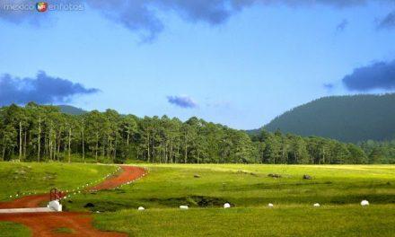 Llano del Conejo: Vísitalo al pasar por zacatlán